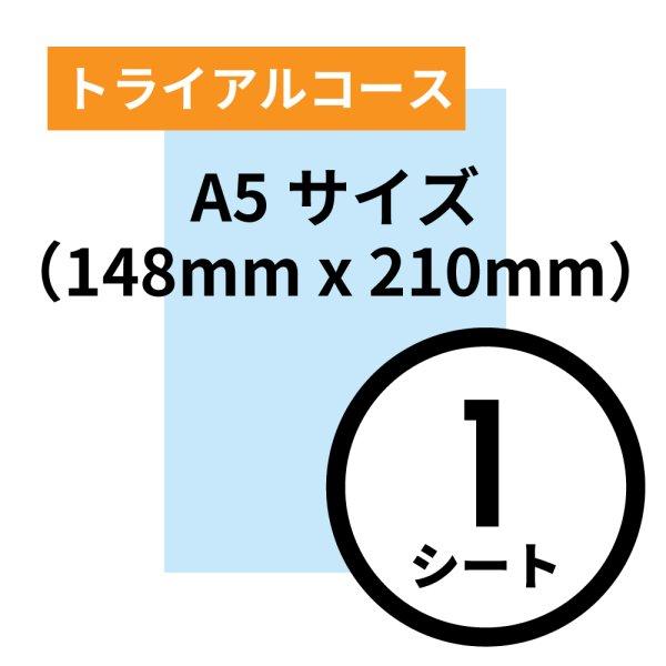 画像1: トライアルコース A5サイズ(148mm x 210mm)1シート (1)